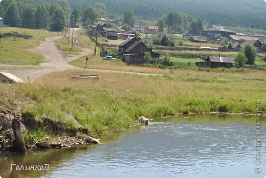 Во время своей поездки на Урал съездили мы в очень живописное место. Это село Косья. Расположено оно в окружении живописных лесистых холмов. фото 5