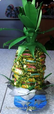 Мой первый ананас... фото 3