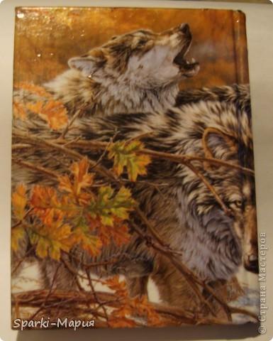 сотворилась вторая партия обложек)))  огненная серия, так сказать.....с волками-это старенький блокнотик фото 9