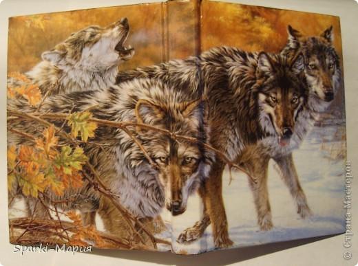 сотворилась вторая партия обложек)))  огненная серия, так сказать.....с волками-это старенький блокнотик фото 10