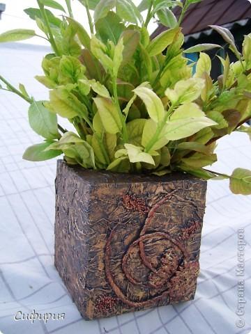 Привет-привет!!! Решила сотворить вот такую вазочку для сухоцвета! Сухоцветы сейчас сохнут, поэтому пока поставила молодые грушевые веточки, уж больно мне понравился ярко-зеленый цвет! фото 1