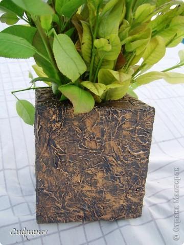 Привет-привет!!! Решила сотворить вот такую вазочку для сухоцвета! Сухоцветы сейчас сохнут, поэтому пока поставила молодые грушевые веточки, уж больно мне понравился ярко-зеленый цвет! фото 2