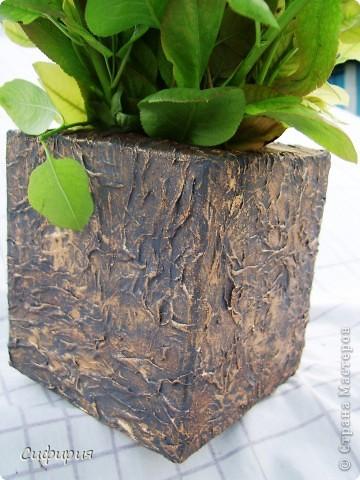 Привет-привет!!! Решила сотворить вот такую вазочку для сухоцвета! Сухоцветы сейчас сохнут, поэтому пока поставила молодые грушевые веточки, уж больно мне понравился ярко-зеленый цвет! фото 4