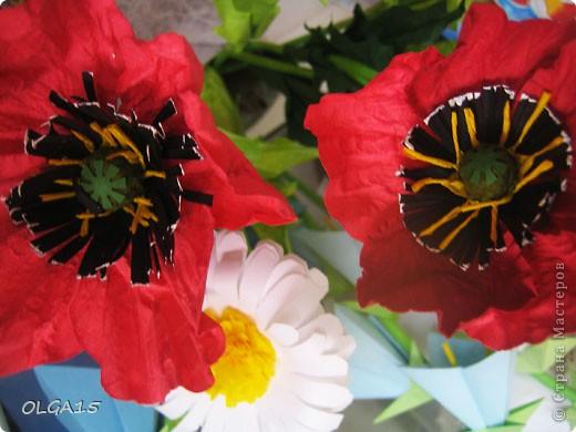 Цветы фото 10