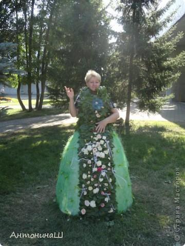 Дорогие друзья. Я тоже решилась на репортаж. Вот уже более 60 лет ежегодно в нашем городе проходит выставка цветов. Еще будучи маленькой девочкой я бывала на такой выставке со своим дедушкой. В те времена для участия приглашали садоводов - любителей. На выставке они делились своими достижениями. Это сейчас в Сибири и виноград выращивают и персики, а когда-то давно и яблоки- то крупные были большой редкостью. Выставка проходила в павильонах, Каждый район города имел свой и стремился как можно интереснее его украсить. фото 17