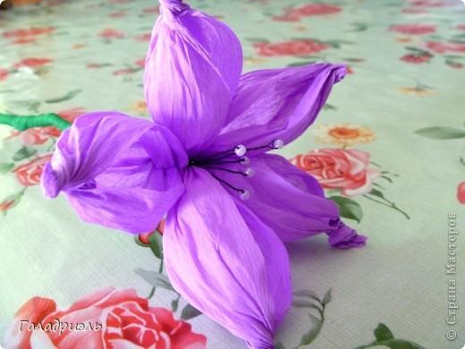 Сделала такой цветок сегодня из креповой бумаги. В интернете попался небольшой мастер-класс по созданию таких цветов вот я и решила попробовать его сделать. фото 1