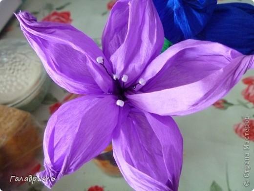 Сделала такой цветок сегодня из креповой бумаги. В интернете попался небольшой мастер-класс по созданию таких цветов вот я и решила попробовать его сделать. фото 2