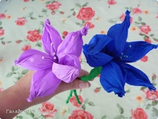 Сделала такой цветок сегодня из креповой бумаги. В интернете попался небольшой мастер-класс по созданию таких цветов вот я и решила попробовать его сделать. фото 4