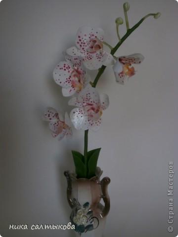 Всем привет! Закончила орхидейку и сакуру для магазина. В заказе не была загнана в рамки, лепила по своему усмотрению- к чему очень рада))) фото 1