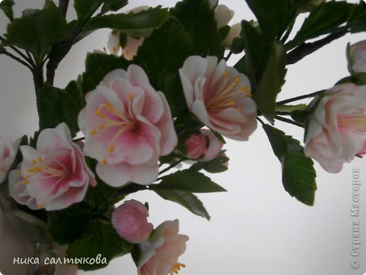 Всем привет! Закончила орхидейку и сакуру для магазина. В заказе не была загнана в рамки, лепила по своему усмотрению- к чему очень рада))) фото 6