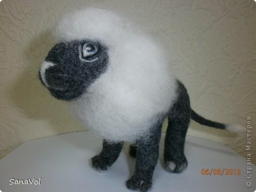 Лев Соломон свалян из овечьей шерсти методом сухого валяния фото 3