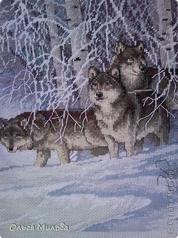 Вышивка крестом «Волки в