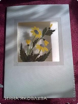 Мастер-класс по изготовлению открыток из засушенных растений в технике лами-арт см.     http://stranamasterov.ru/node/393933  фото 8