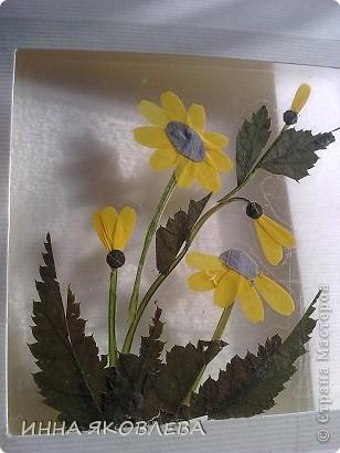 Мастер-класс по изготовлению открыток из засушенных растений в технике лами-арт см.     http://stranamasterov.ru/node/393933  фото 9