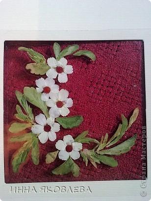 Мастер-класс по изготовлению открыток из засушенных растений в технике лами-арт см.     http://stranamasterov.ru/node/393933  фото 6