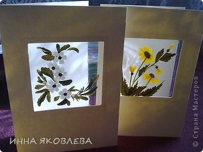 Мастер-класс по изготовлению открыток из засушенных растений в технике лами-арт см.     http://stranamasterov.ru/node/393933  фото 5