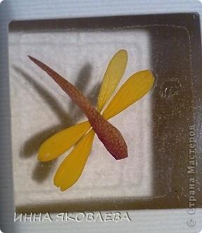 Мастер-класс по изготовлению открыток из засушенных растений в технике лами-арт см.     http://stranamasterov.ru/node/393933  фото 2