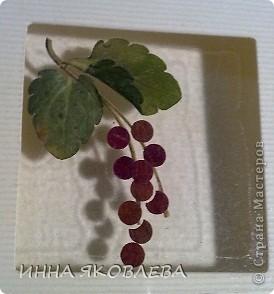 Мастер-класс по изготовлению открыток из засушенных растений в технике лами-арт см.     http://stranamasterov.ru/node/393933  фото 4