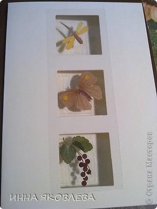 Мастер-класс по изготовлению открыток из засушенных растений в технике лами-арт см.     http://stranamasterov.ru/node/393933  фото 1