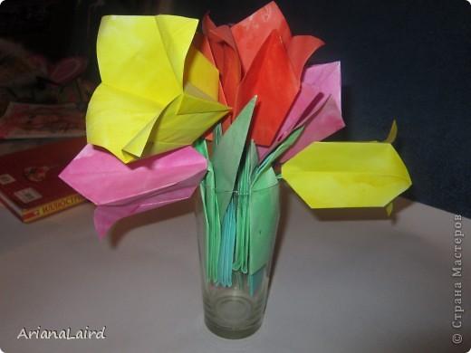 Тюльпаны)