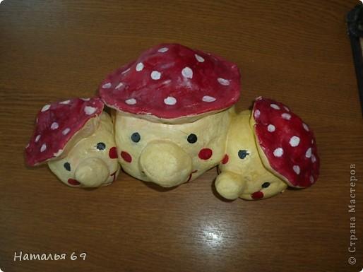 грибочки фото 1