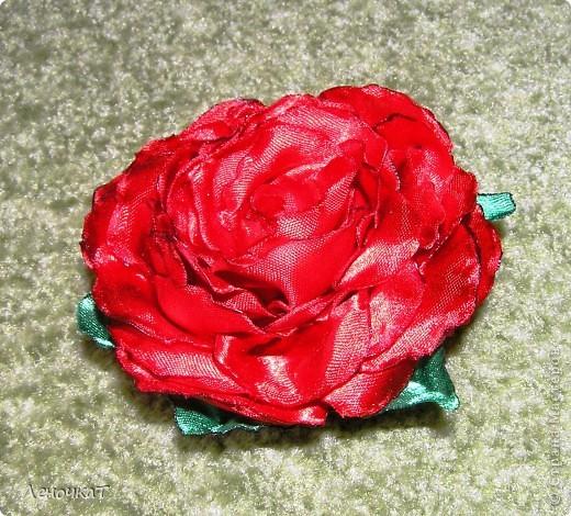 Урааааааа!!!!!И   в моем  саду  роза   расцвела!!!!! фото 2