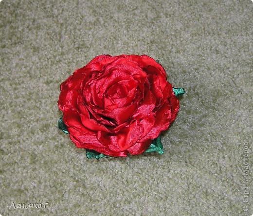 Урааааааа!!!!!И   в моем  саду  роза   расцвела!!!!! фото 3