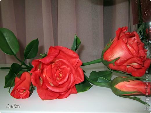 Надеюсь пока этим букетом завершиться моя *розовая* эпопея.Очень хочется заняться ещё чем-то.Не могу сказать. что я не люблю делать розы, просто за последнее время их было слишком много. Ну а сейчас приятного просмотра. фото 6