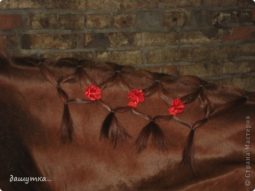 заколочки для лошади оцените! фото 1