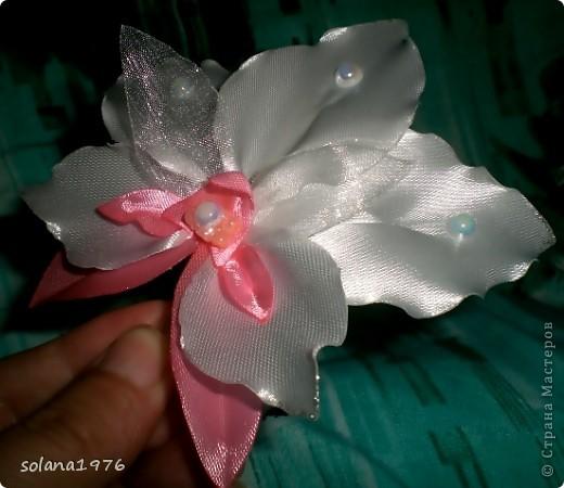 Цветочек(дело было вечером,делать было нечего..)))) фото 1