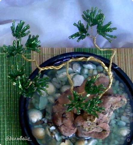 "композиция ""чайная церемония"" фото 5"