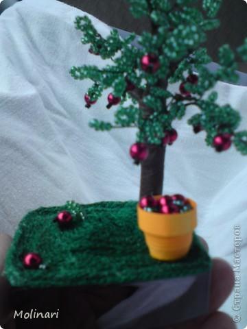 Первое деревце из бисера. Яблоня... фото 3