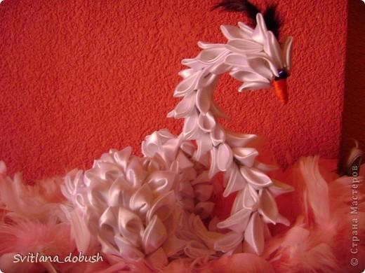 Лебедушка. фото 1