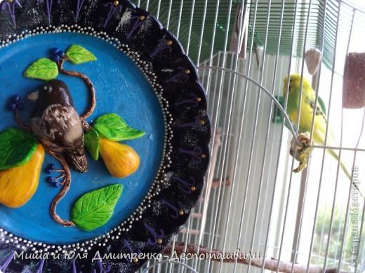 Все, ко любит груши и птичек! Вам сегодня только ко мне и никуда больше )))) фото 3