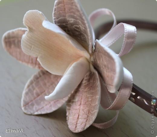 странная орхидея, селекционная))) фото 1