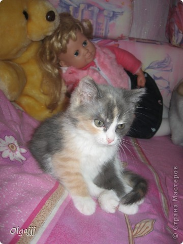 я вам расскажу  и покажу нашу Принцессу с самого детсва фото 5