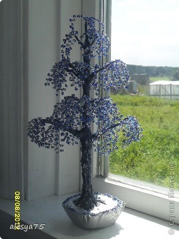 синий-синий иней.... фото 1