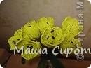 Желтые тюльпаны... очень красиво) фото 1
