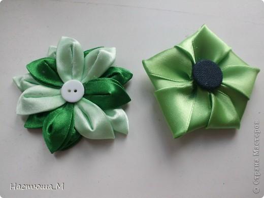 Вот два новых цветочка=) фото 1