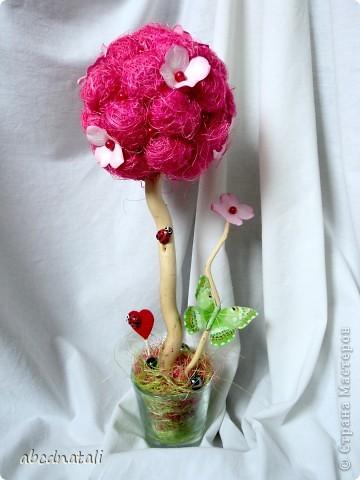 Розовое дерево счастья фото 4
