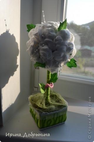 Здравствуй, дорогая Страна!!! Хочу показать свои деревца. Я их дарю близким и любимым людям, поэтому остаются они у меня только в виде фотографий. фото 6
