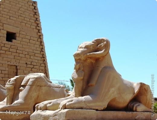 Здравствуйте Жители Страны! Случилось в этом году мне попасть в Египет. Почему случилось???? Потому что не собиралась  ни куда....Надеюсь что не утомлю Вас своим рассказом и фотографиями! И того и другого ОООООООЧЕНЬ МНОГО! фото 1