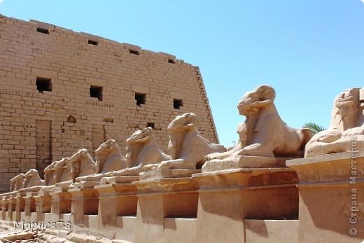 Здравствуйте Жители Страны! Случилось в этом году мне попасть в Египет. Почему случилось???? Потому что не собиралась  ни куда....Надеюсь что не утомлю Вас своим рассказом и фотографиями! И того и другого ОООООООЧЕНЬ МНОГО! фото 4
