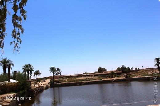 Здравствуйте Жители Страны! Случилось в этом году мне попасть в Египет. Почему случилось???? Потому что не собиралась  ни куда....Надеюсь что не утомлю Вас своим рассказом и фотографиями! И того и другого ОООООООЧЕНЬ МНОГО! фото 25
