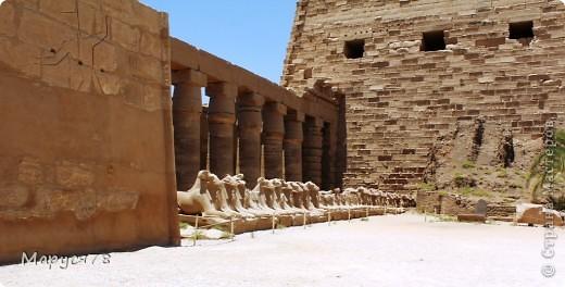 Здравствуйте Жители Страны! Случилось в этом году мне попасть в Египет. Почему случилось???? Потому что не собиралась  ни куда....Надеюсь что не утомлю Вас своим рассказом и фотографиями! И того и другого ОООООООЧЕНЬ МНОГО! фото 8