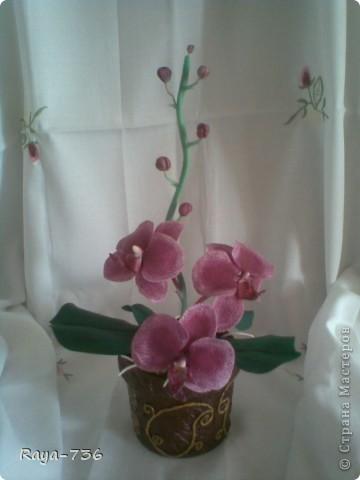 Добрый день, Страна!Представляю на Ваш суд мою первую Орхидею.Лепила ее  с помощью самодельного молда,правда недочетов много,но я еще учусь.Извините за некачественные фото,снимала на телефон. фото 1