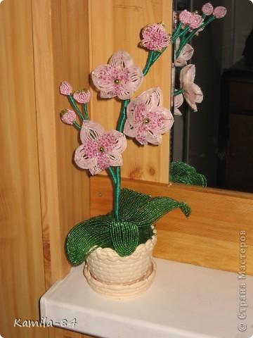 Вот моя орхидея, фото конечно не передает всей прелести цветка, он очень переливается. Сделала на заказ, надеюсь понравится. А вы девочки что скажите?