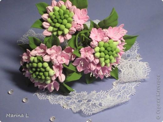 Вот такие получились цветочки неизвестной породы,ждут своего часа,пока еще не решила каким будет букет. фото 1