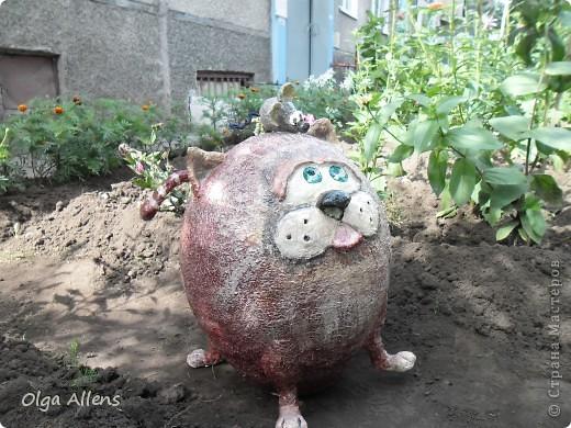 """Садовое повторение моего кота """" Кубик"""" . http://stranamasterov.ru/node/314526 Тут он гораздо больше и внушительнее)) фото 3"""