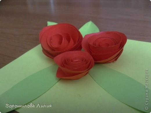 Первые мои розы фото 2